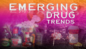 drug culture title graphic